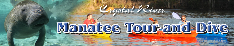 Manatee Tours in Crystal River